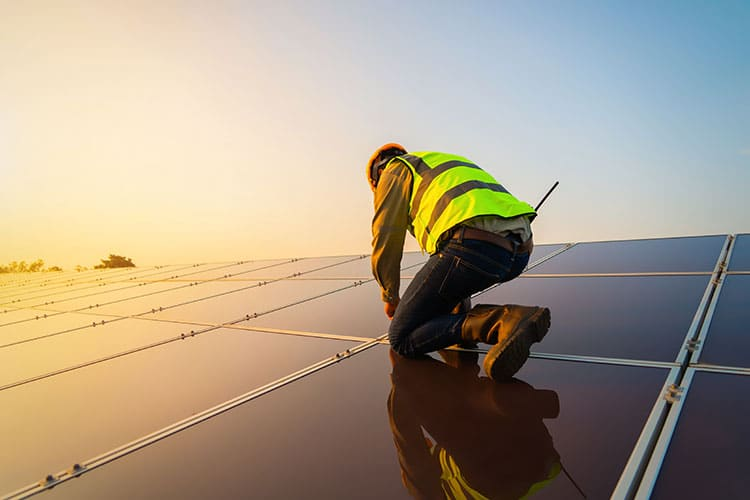 Solar panels and business